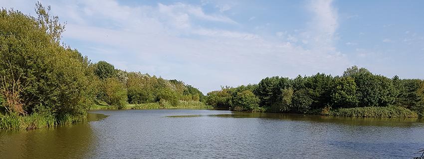 Fishing at Noddle Hill Nature Reserve