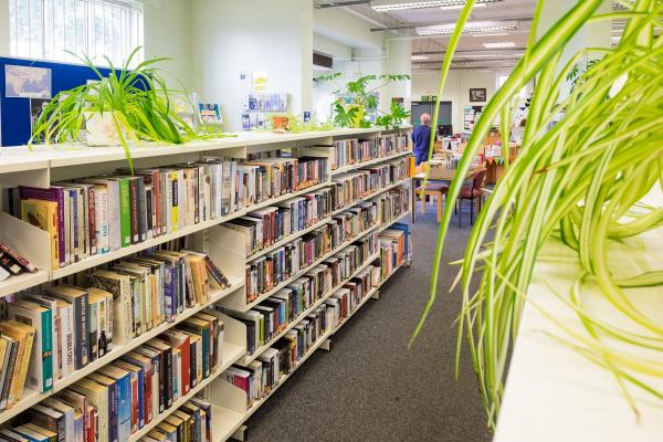 Gipsyville Library 2